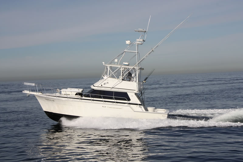 Impulse 6-pack Fishing Charter San Diego